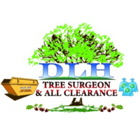 dlhtreesurgeons.co.uk