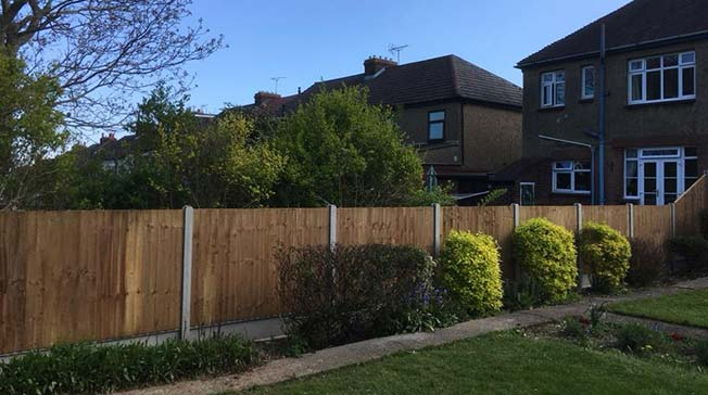 New fencing Installation with hedges trimmed